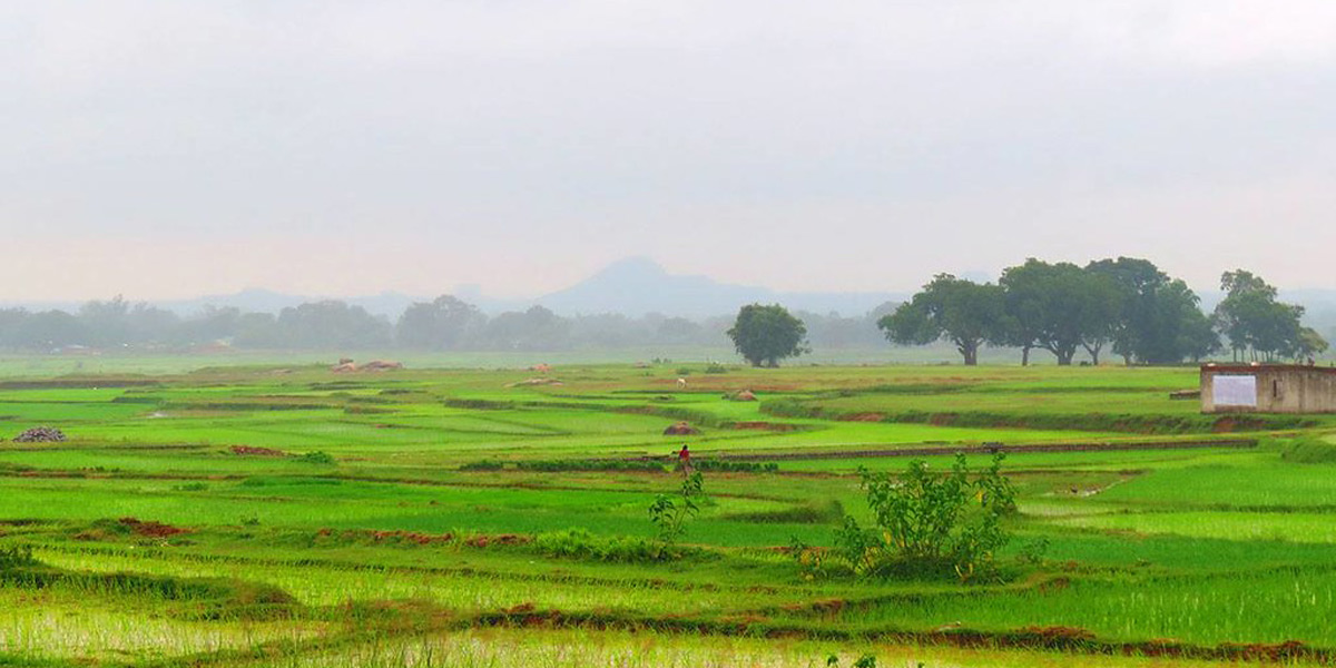 Jharkhand landscape - Photo: Flickr / Wasim Raja