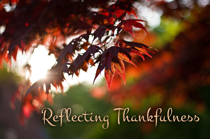 Reflecting Thankfulness