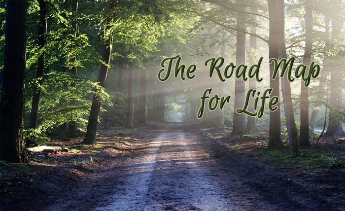 The Road Map for Life