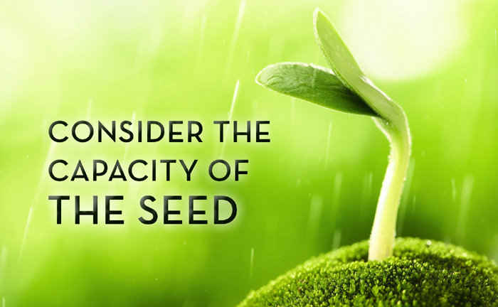 Consider the capacity of the seed